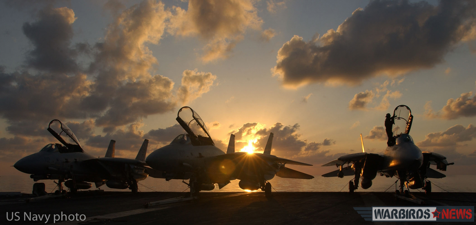 "At sea aboard USS Theodore Roosevelt (CVN 71) Dec. 24, 2001-- A row of F-14 ""Tomcats"" assigned to the ""Diamondbacks"" of Fighter Squadron One Zero Two (VF 102) await their next mission. Theodore Roosevelt and her embarked Carrier Air Wing One (CVW-1) are conducting missions in support of Operation Enduring Freedom. U.S. Navy Photo by Photographer's Mate Airman Carly Joy Cranston (Released)"