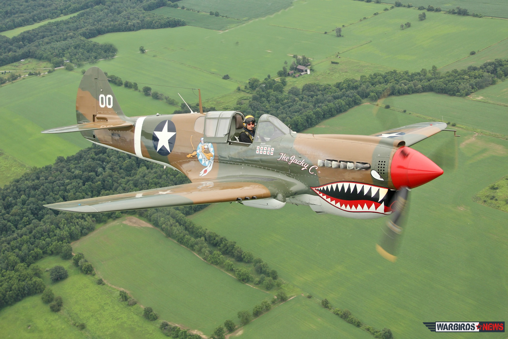 "Air-toAir shot of the Curtiss P-40 Warhawk ""Jacky C"" operated by the American Airpower Museum"