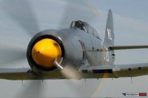 Head on with a Sea Fury (Image Credit: Luigino Caliaro)