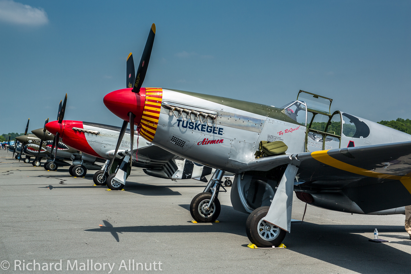 The CAF Red Tail Squadron's P-51C in the foreground at Culpeper, Virginia for the Arsenal of Democracy Flyover. (photo by Richard Mallory Allnutt)