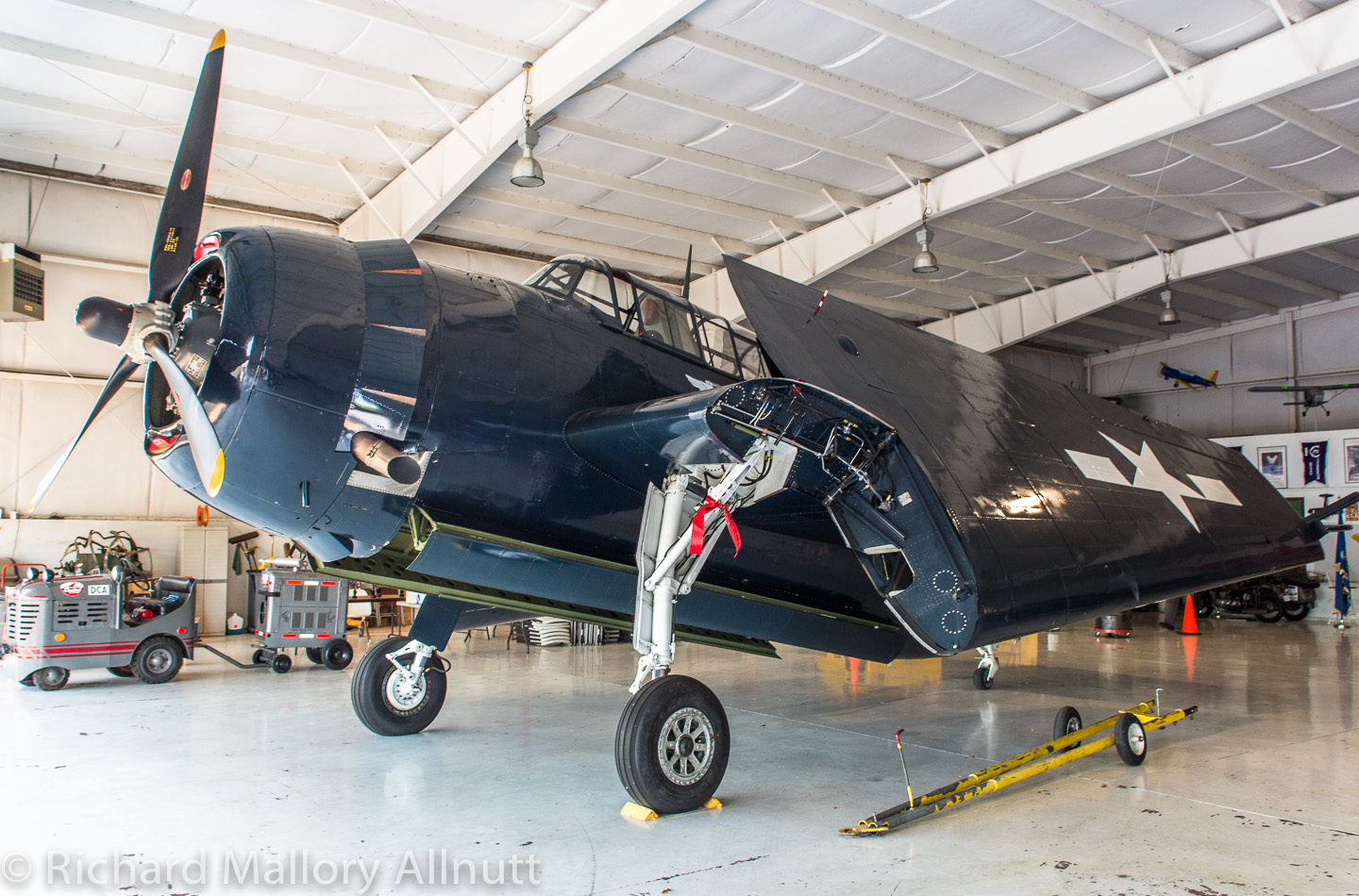 The CAF's freshly refurbished TBM-3E Avenger (Bu.91426) is now home in Culpeper. (photo by Richard Mallory Allnutt)