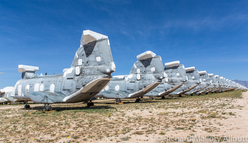 A seemingly endless row of freshly retired CH-46 Seaknights as seen at AMARG in Tucson, Arizona in March, 2014. The last of the fleet is set to retire later  this year. (photo by Richard Mallory Allnutt)
