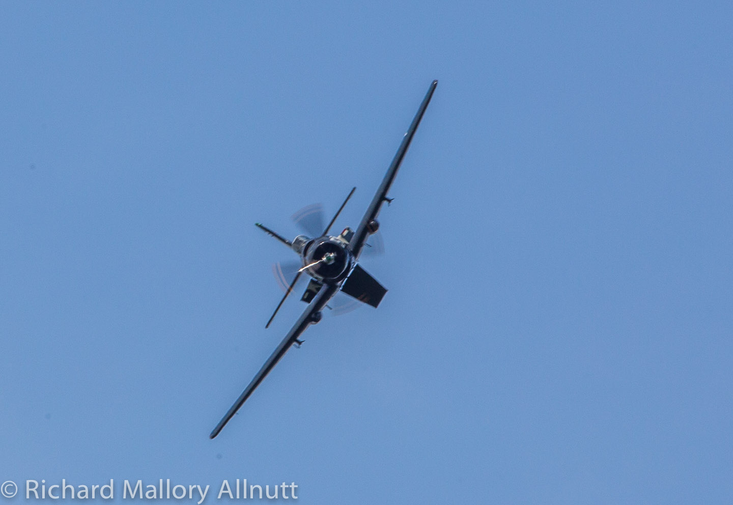 _C8A9514 - Richard Mallory Allnutt photo - Warbirds Over the Beach - Military Aviation Museum - Pungo, VA - May 17, 2014
