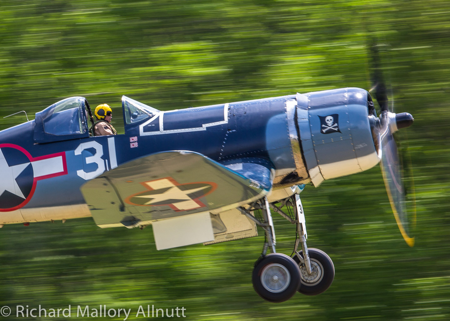 John Fuentes flying the Military Aviation Museum's FG-1D Corsair. (photo by Richard Mallory Allnutt)