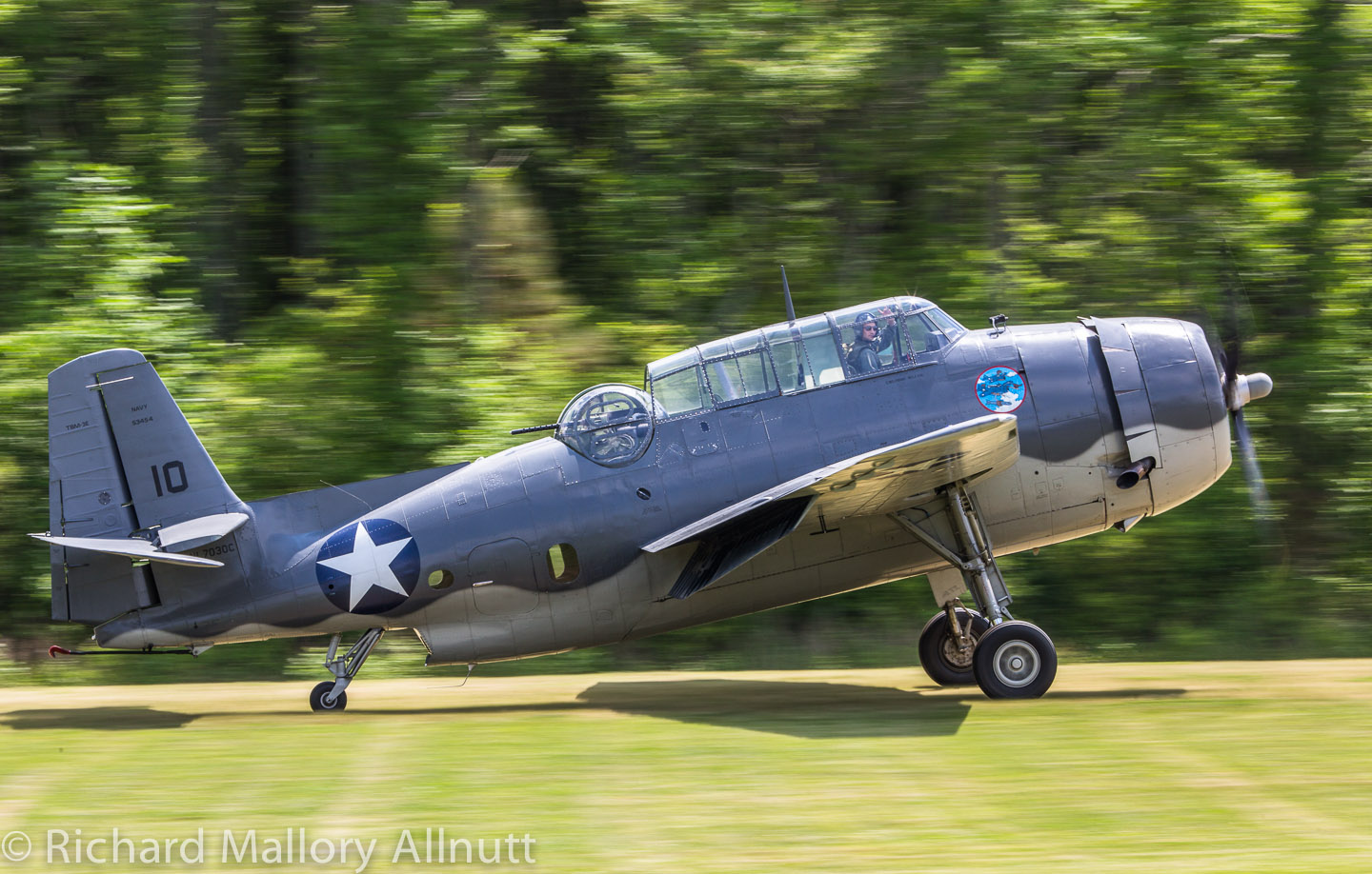 _C8A9831 - Richard Mallory Allnutt photo - Warbirds Over the Beach - Military Aviation Museum - Pungo, VA - May 17, 2014