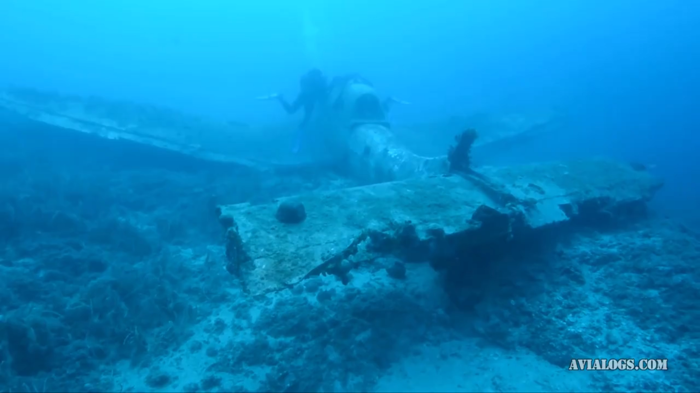 The sunken Stuka in the Mediterranean waters off Croatia. (screen capture from Hrvoslav Pavic video via Avialog.com)