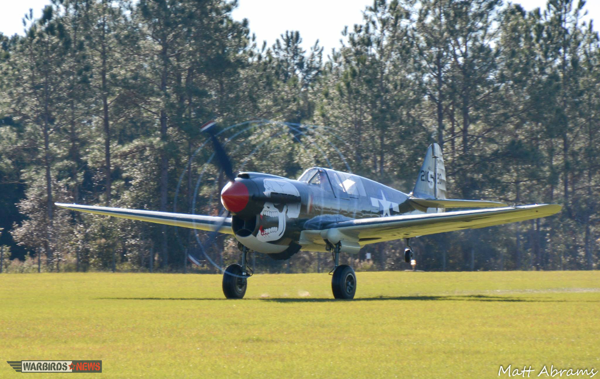 Curtiss P-40N Warhawk_WM_5