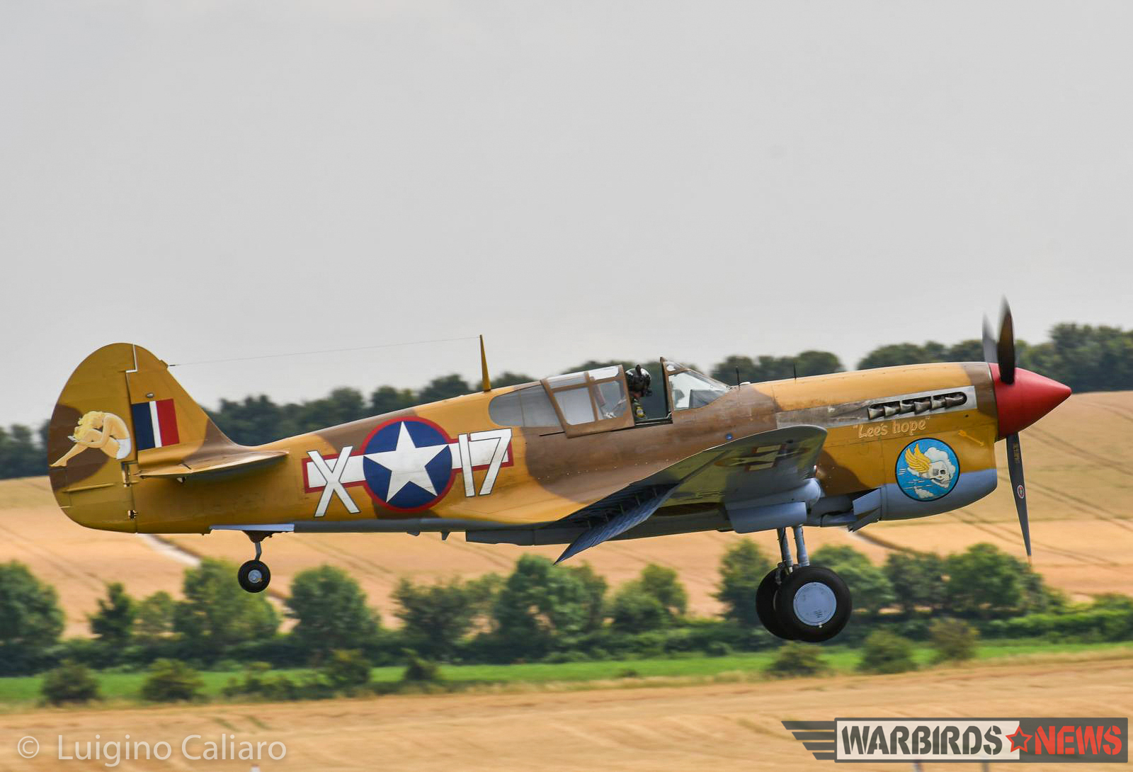 The Fighter Collection's very rare, Merlin-engined P-40F. (photo by Luigino Caliaro)