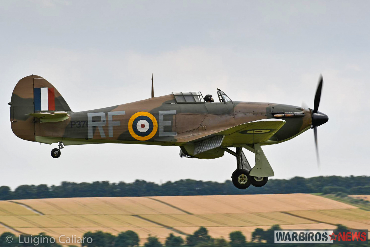 The Historic Aircraft Collection's Hawker Hurricane XII P3700, marked as a Battle of Britain era Mk.I of 303 (Polish) Squadron, comes in for a landing. (photo by Luigino Caliaro)
