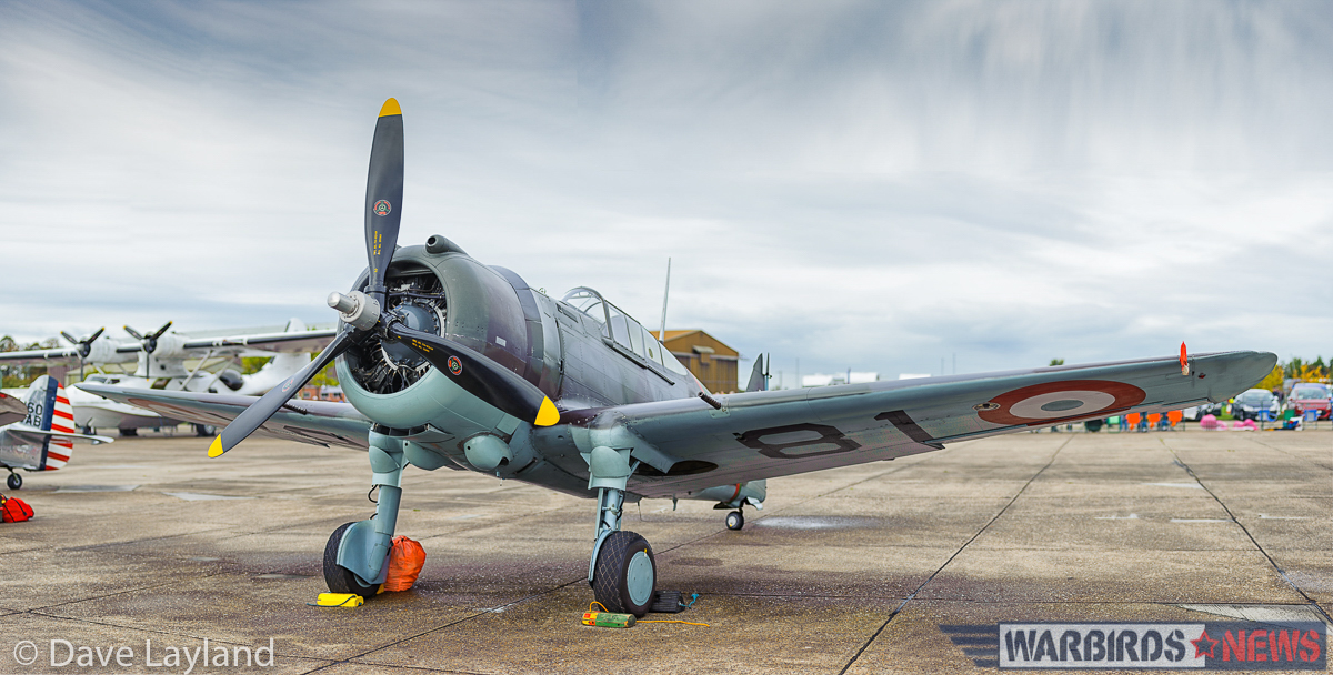 The Fighter Collection Hawk 75 on the flight line. (photo by Dave Layland)