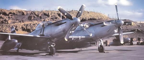 "F-82E Twin Mutstang at Adak Island, Alaska, 1948.United States Air Force via Wings magazine - October 2003 edition ""Alaska Twin Mustangs"""
