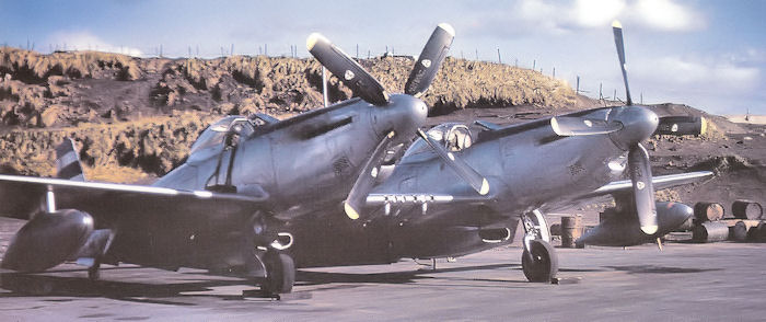 "F-82E Twin Mutstang at Adak Island, Alaska, 1948.United States Air Force via Wings magazine - October 2003 edition ""Alaska Twin Mustangs"""