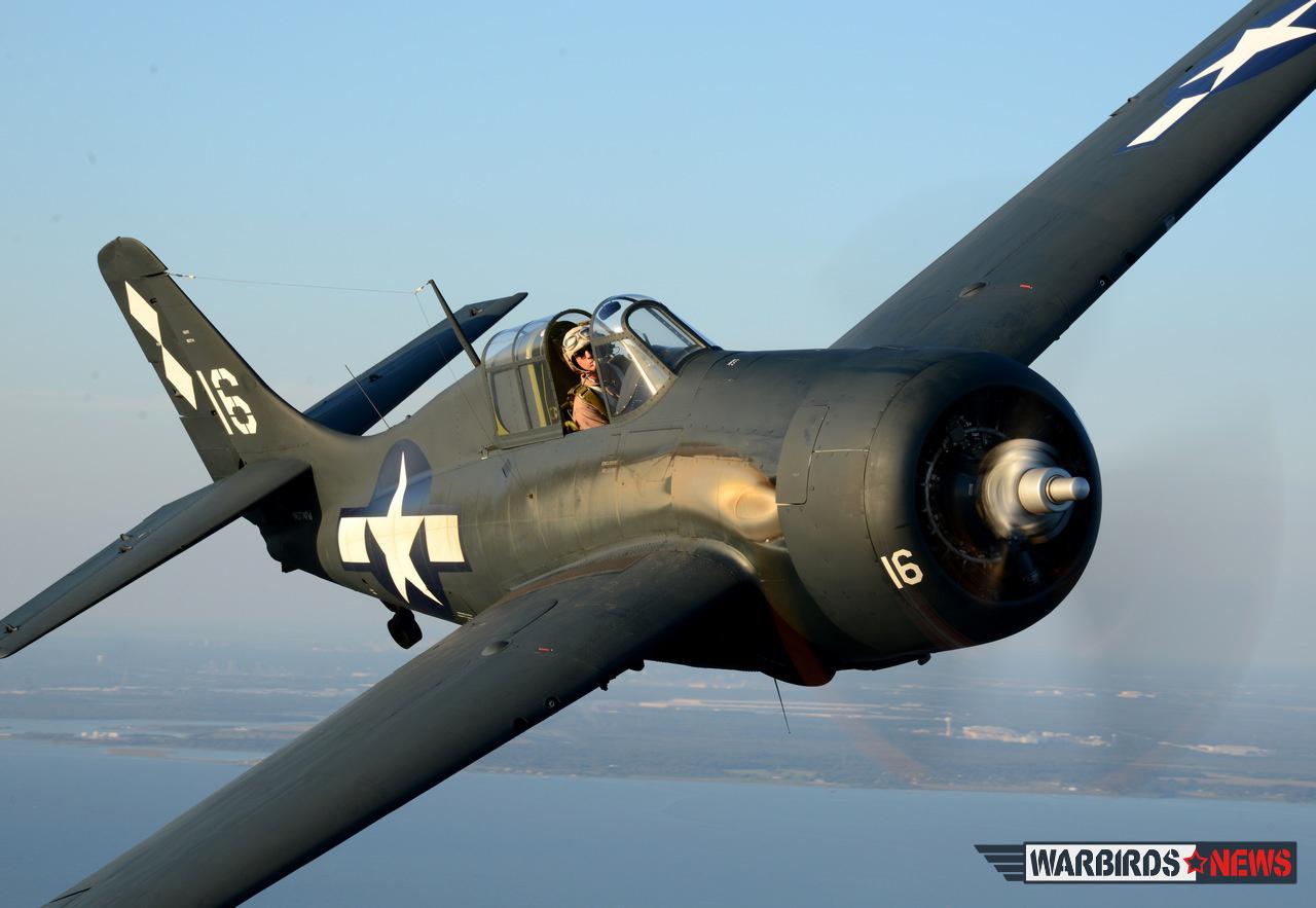 FM-2 Wildcat Wild Warbirds_5