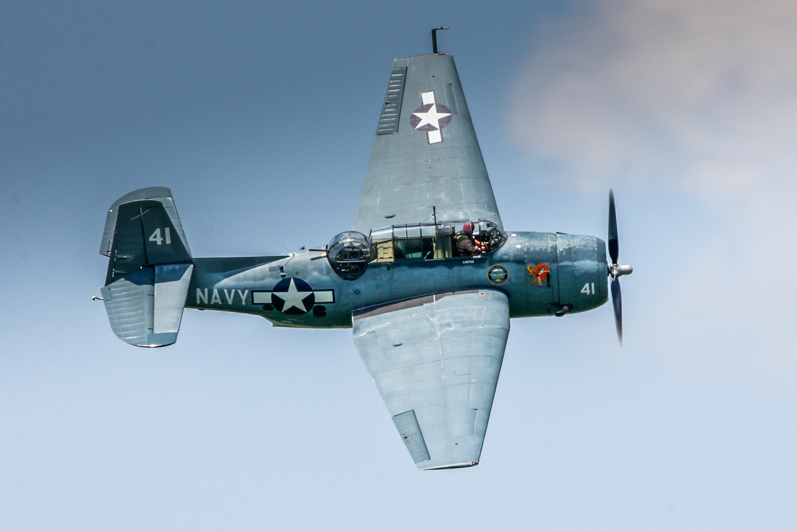 TBM Avenger flown by Charlie Lynch. (photo by Tom Pawlesh)