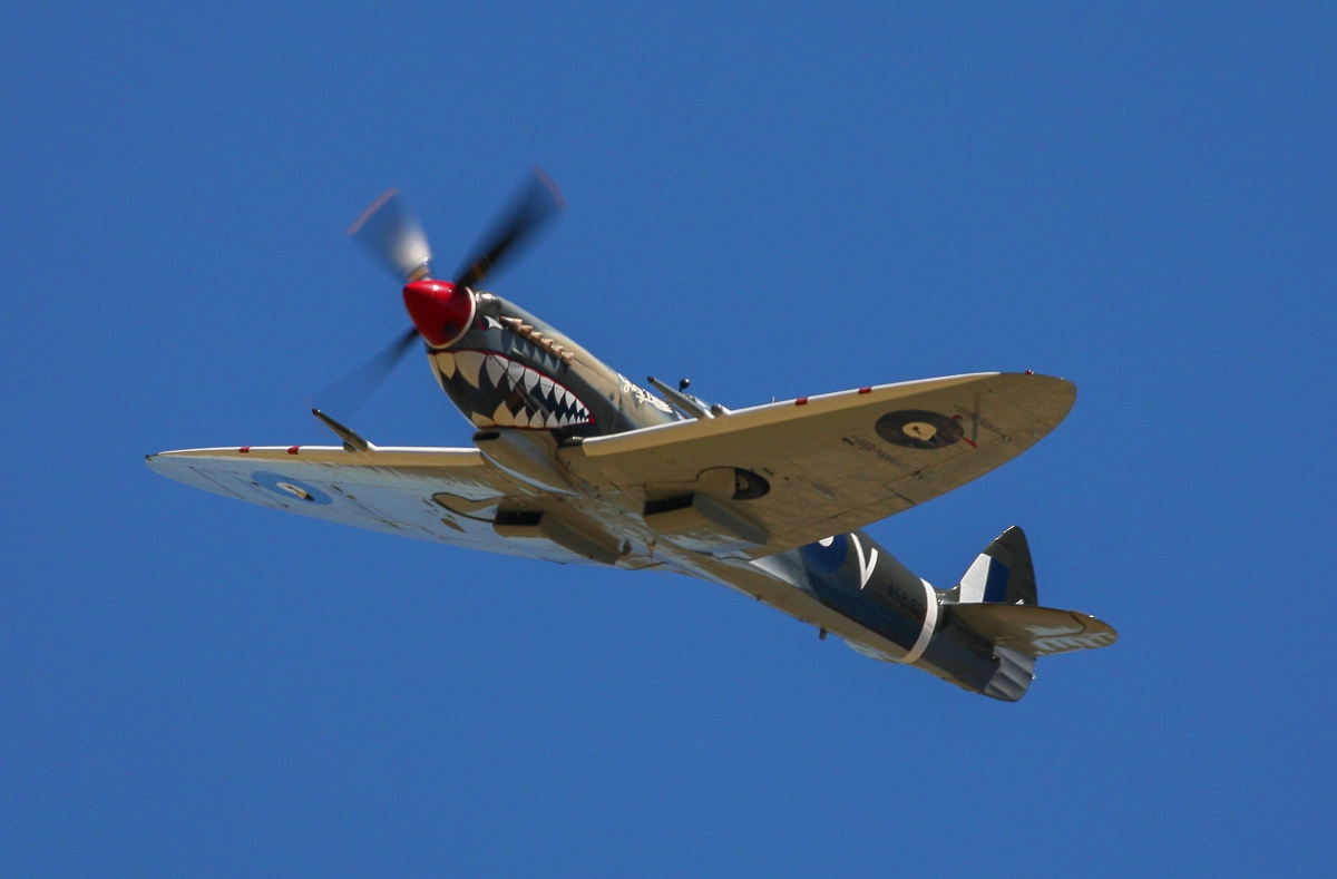 A nice closeup of the Spitfire Mk.VIII. (photo by Phil Buckley)