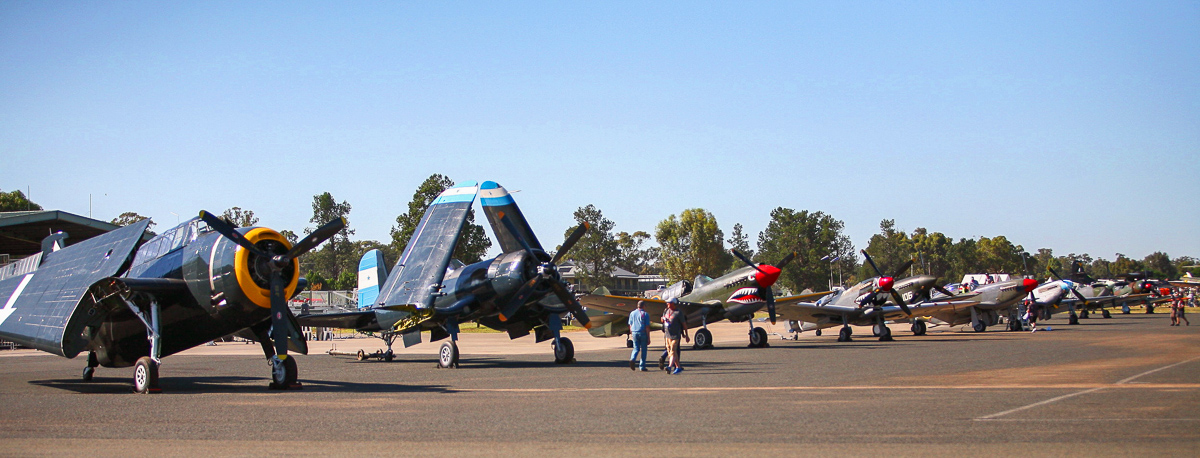A lineup of some of the fighters for the Temora Aviation Museum's air show in November. (photo by Phil Buckley)
