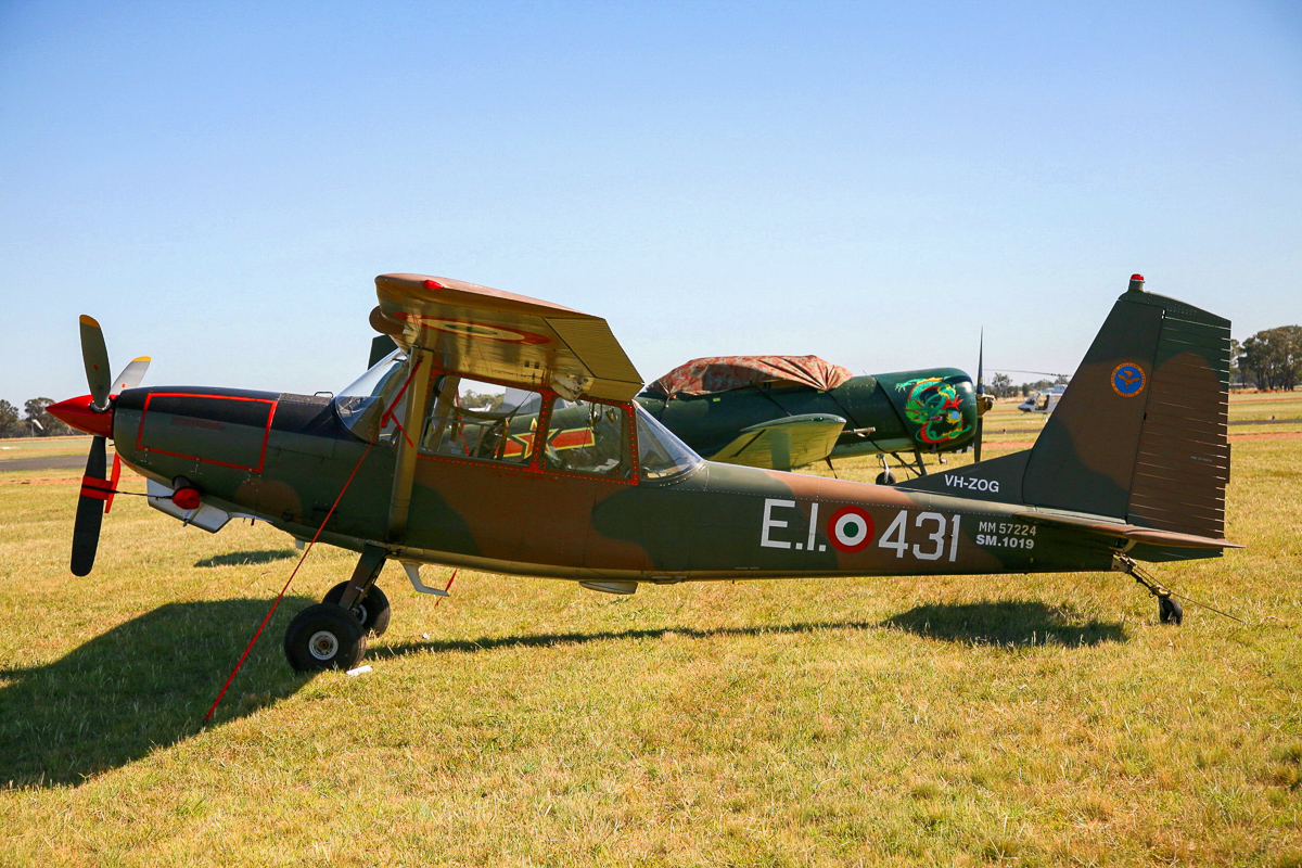 A former Italian Air Force Birddog, one of several O-1 variants at Warbirds Downunder. (photo by Phil Buckley)