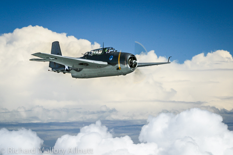 Jerry Yagen's TBM-3E Avenger Bu.53454 over the Delaware countryside. (photo by Richard Mallory Allnutt)
