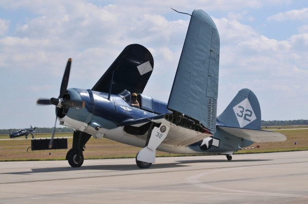 The unmistakeable, massive Helldiver folding its wings after the performance. (Image credit Luigino Caliaro)