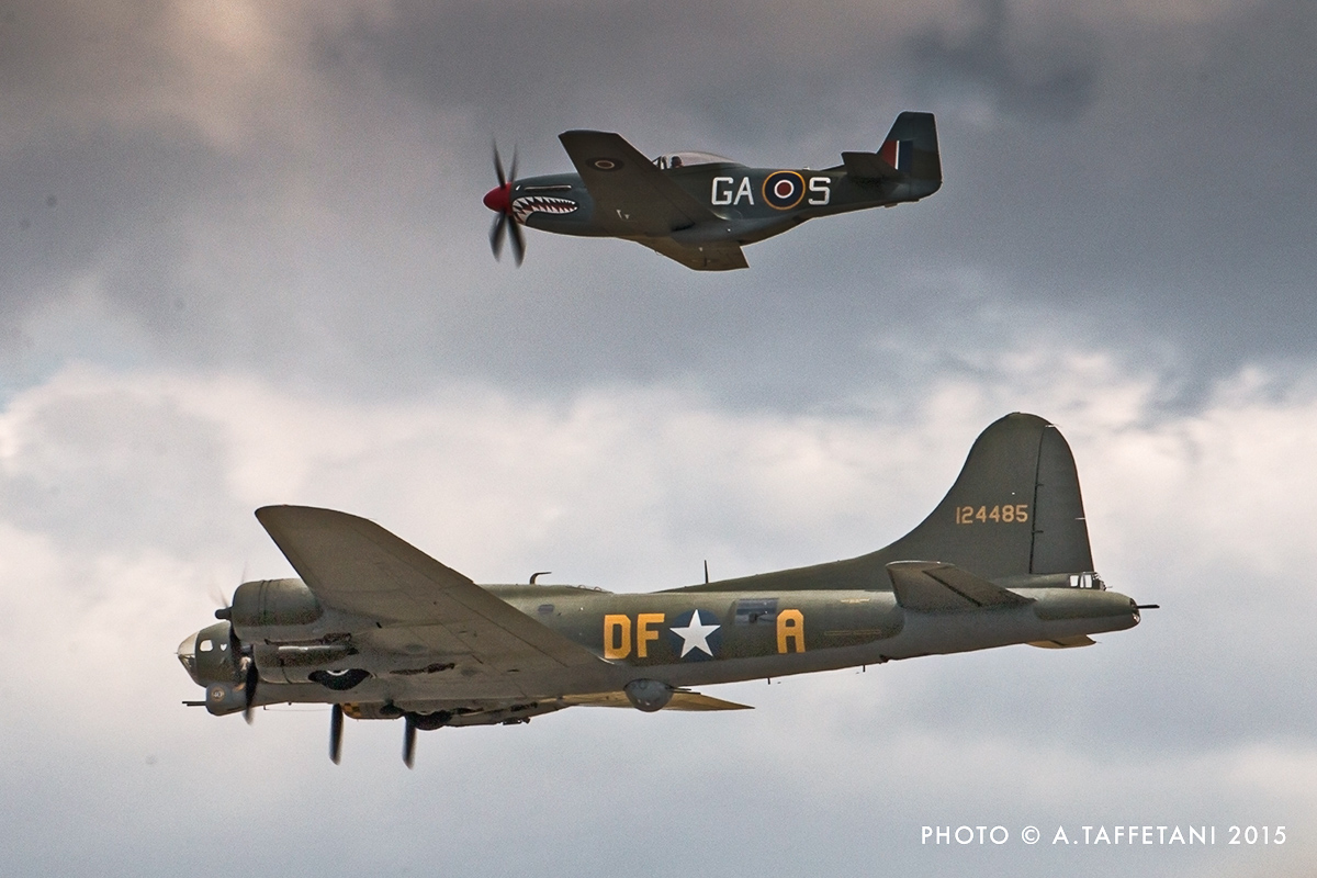Sally B and her 'little friend'. (photo by Alessandro Taffetani)