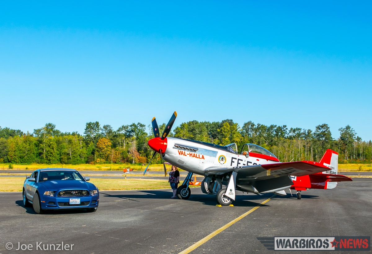 Morning Sun Hits Two Educational Mustangs. (photo by Joe Kunzler)