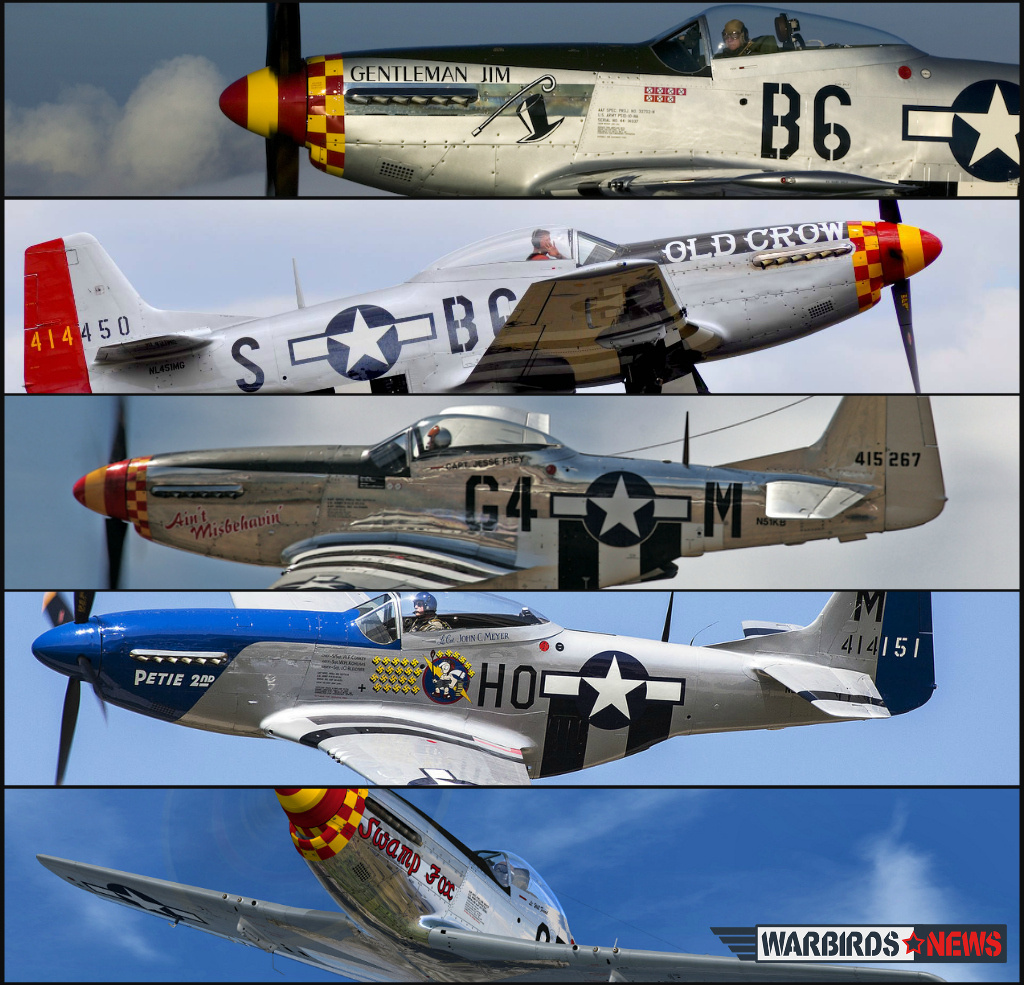 P-51 Mustangs Collage1
