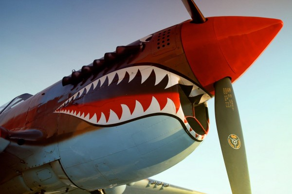 P-40 - Open Cockpit on Sat, Feb 15 from 11:00 - 3:00