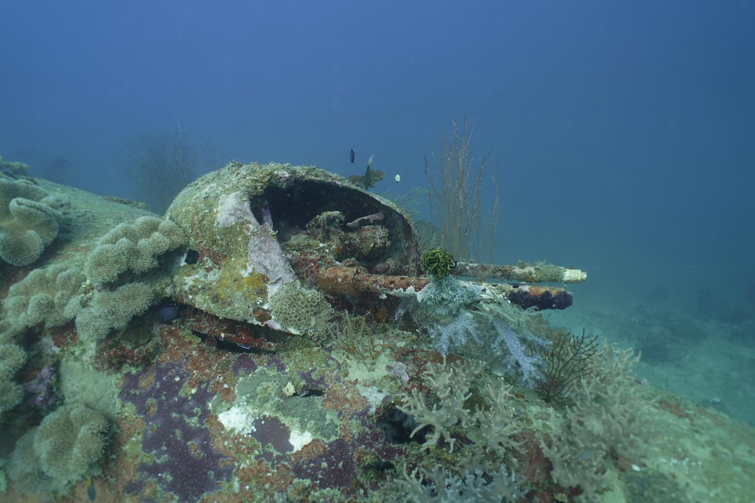 Two Missing World War II B-25 Bombers Documented by Project Recover Off Papua New Guinea _3