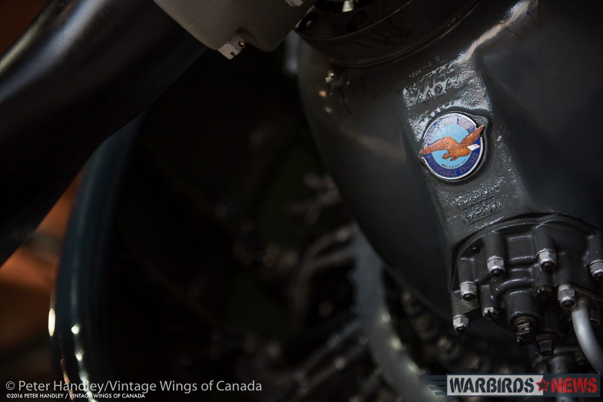 The famous Pratt&Whitney logo on the Corsair's R-2800 engine. (photo by Peter Handley)