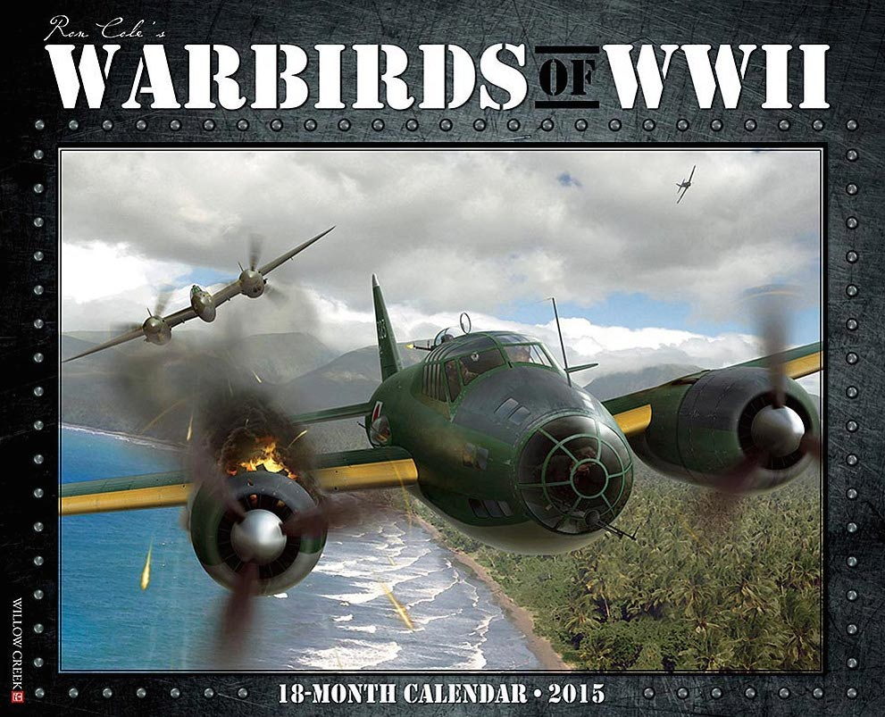 Warbirds of WWII by ROn Cole
