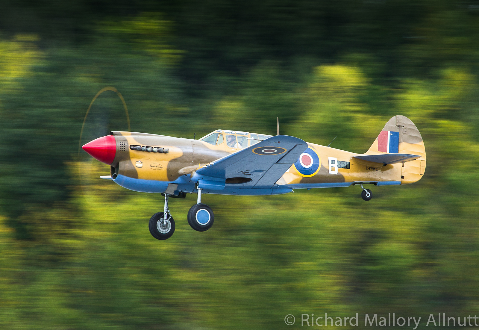 Dave Hadfield roars into the sky in Vintage Wings of Canada's Curtiss Kittyhawk IV. (photo by Richard Mallory Allnutt)